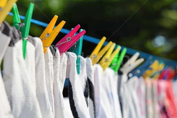 Drying clothes Stock photo © hamik