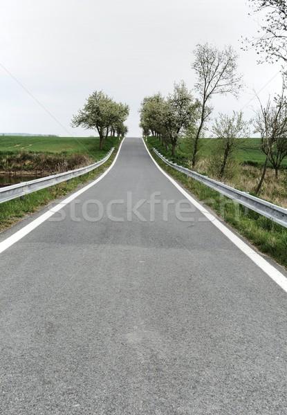 Estrada rural ver profundo em linha reta árvores estrada Foto stock © hamik
