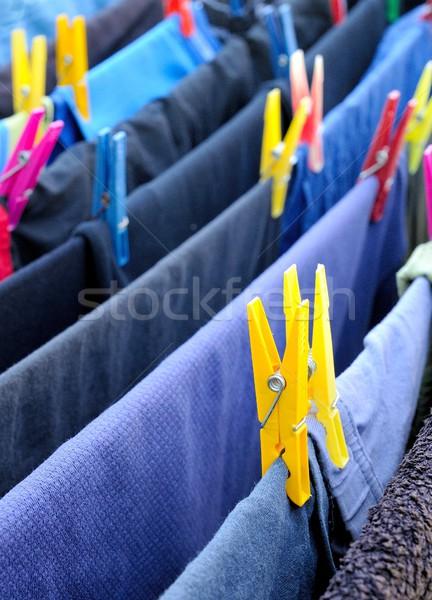 Roupa cavalo azul limpar plástico pin Foto stock © hamik