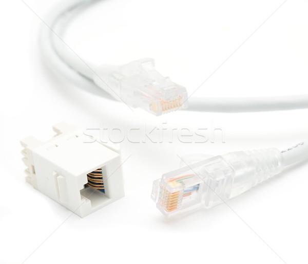 Ethernet kablo gri bilgisayar dijital kadın Stok fotoğraf © hamik