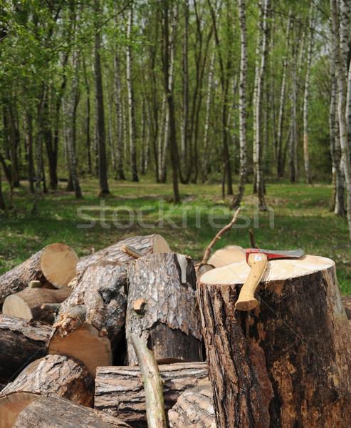 Cut the wood Stock photo © hamik