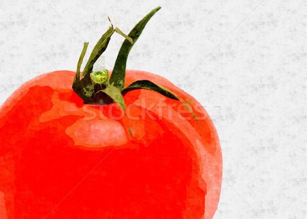Domates Yağ Boyama Taze Kırmızı Beyaz Stok Fotoğraf