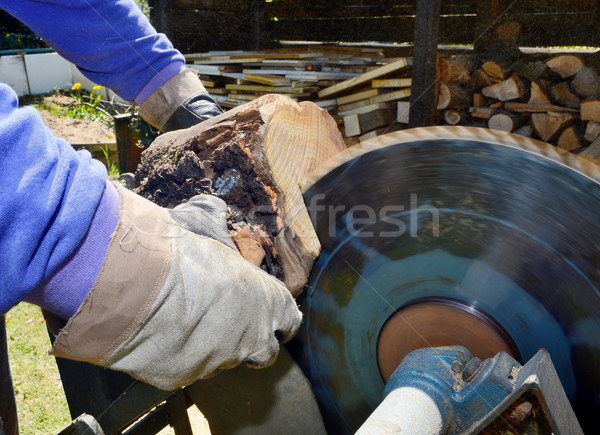 Cutting wood Stock photo © hamik