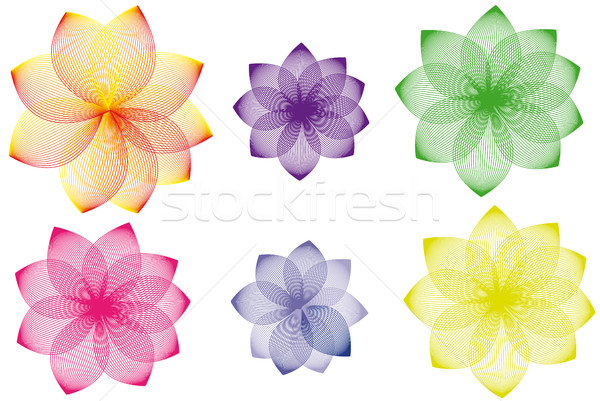 Floral variations Stock photo © hamik