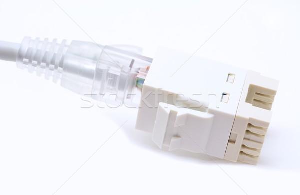 Ethernet связи серый кабеля компьютер сеть Сток-фото © hamik