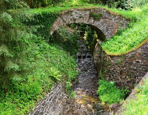 Folyam híd vad folyik öreg kő Stock fotó © hamik
