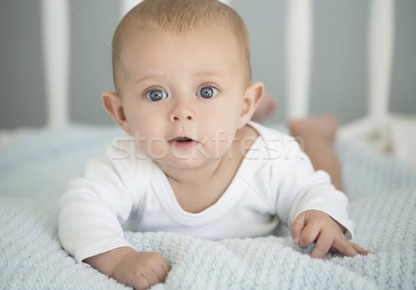 Kaukázusi baba fiú aranyos puha pléd Stock fotó © handmademedia