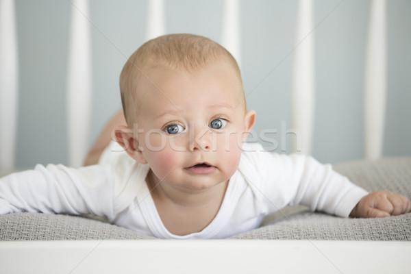 кавказский ребенка мальчика Cute мягкой Сток-фото © handmademedia