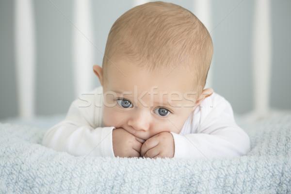 Kafkas bebek erkek sevimli yumuşak battaniye Stok fotoğraf © handmademedia