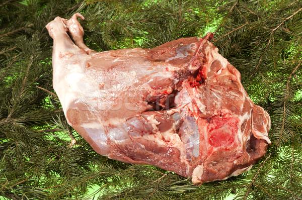 Fresh Boars Rump Stock photo © hanusst