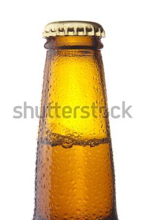 Bottle of beer Stock photo © hanusst