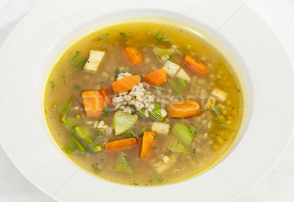 Sopa de legumes cenoura alho-porro aipo saúde laranja Foto stock © hanusst