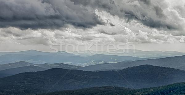パノラマ 森林 雲 春 日没 ストックフォト © hanusst