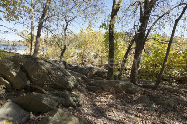 Potomac River in the Autumn Stock photo © hanusst