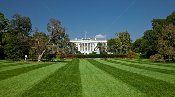 White House, Washington D.C. Stock photo © hanusst