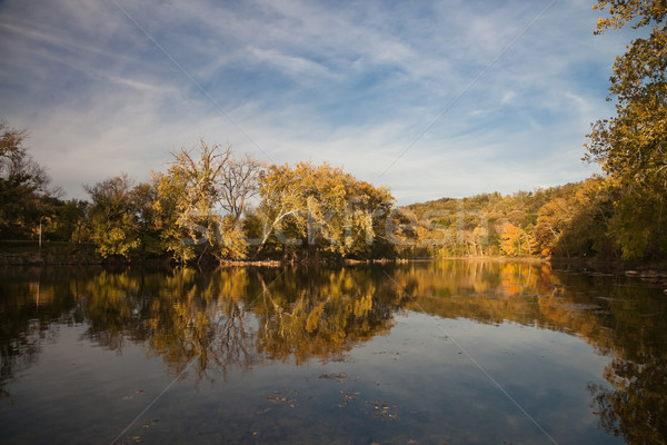 Trees reflecting in the Shenandoah River Stock photo © hanusst