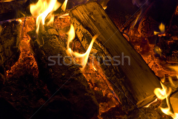 Camp fire burning in the night  Stock photo © hanusst