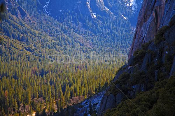 ヨセミテ国立公園 カリフォルニア 空 ツリー 雲 草 ストックフォト © hanusst