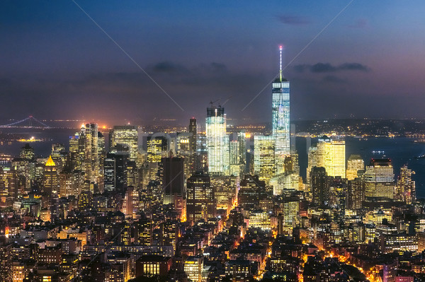 The New York City Downtown w the Freedom tower Stock photo © hanusst