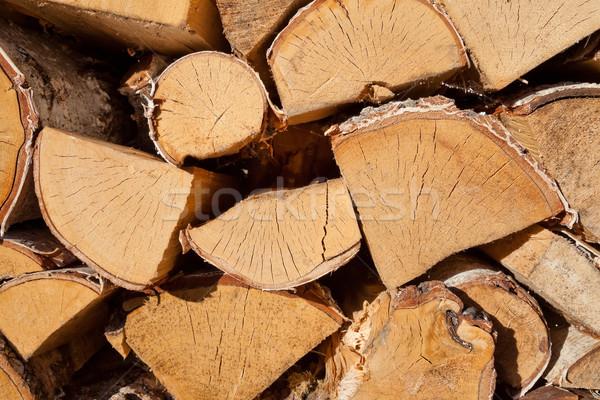 Wood texture of cut tree trunks, close-up Stock photo © hanusst