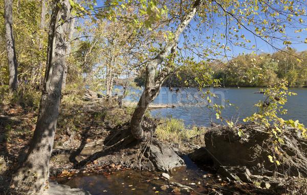 Folyó ősz Virginia USA fa háttér Stock fotó © hanusst