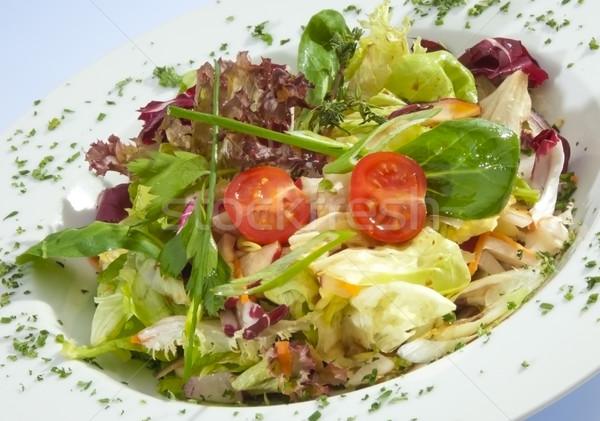 салата Салат петрушка шпинат продовольствие природы Сток-фото © hanusst