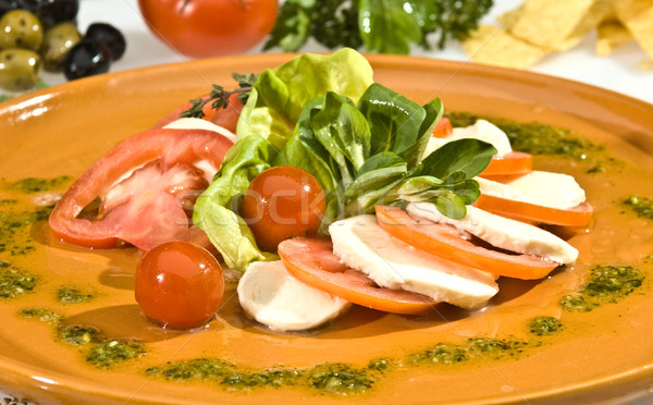 Mozzarella dish mexican style Stock photo © hanusst