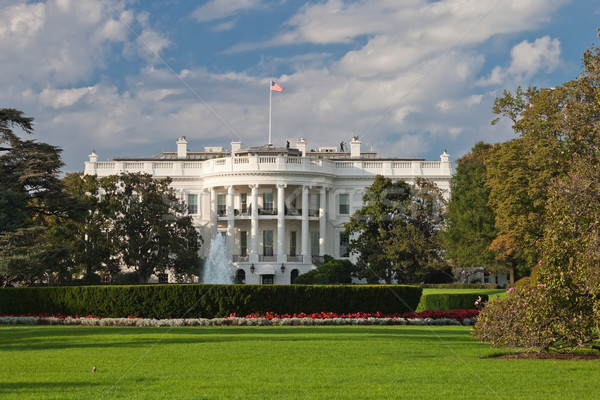 White House Stock photo © hanusst