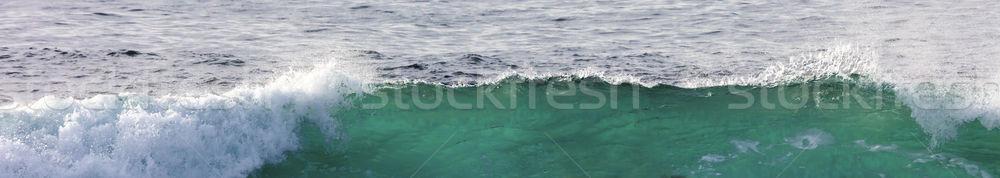 Groot golf pauze spray oceaan strand Stockfoto © hanusst