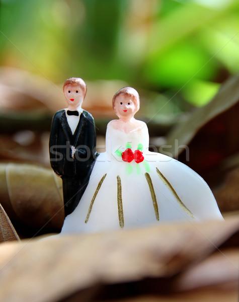 Esküvő pár baba levelek föld nő Stock fotó © happydancing
