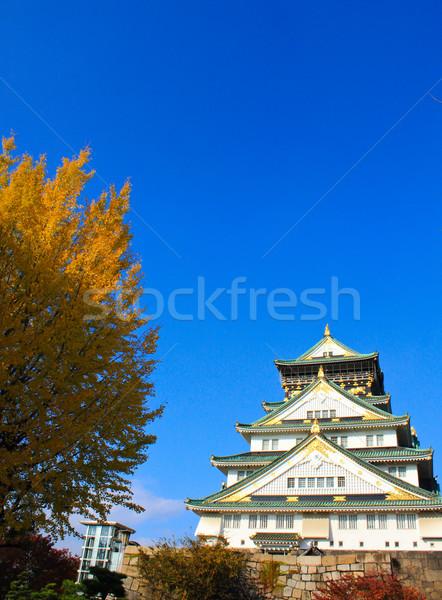 Osaka kale mavi gökyüzü Japonya duvar doğa Stok fotoğraf © happydancing