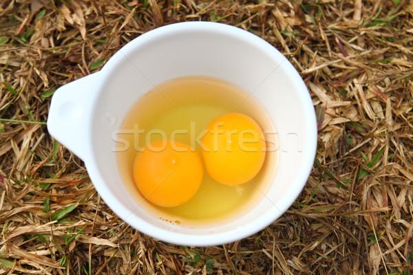 Huevos preparado cocinar naturaleza salud huevo Foto stock © happydancing