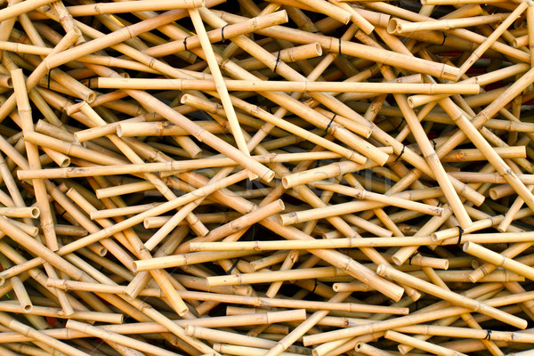 Group of messy bamboo sticks Stock photo © happydancing