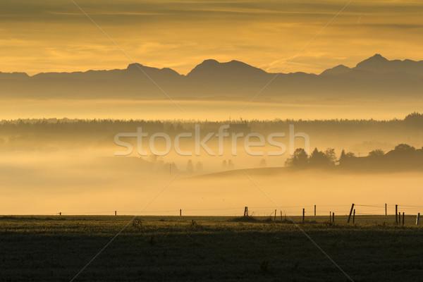 Sunrise over the alps, Bavaria, Germany Stock photo © haraldmuc