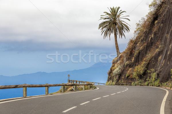 Country road on Gomera island, Spain Stock photo © haraldmuc