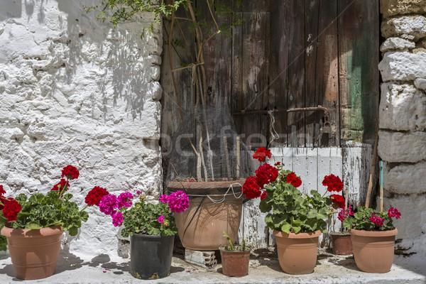 Bloemen oude huis Griekenland bloem gebouw tuin Stockfoto © haraldmuc