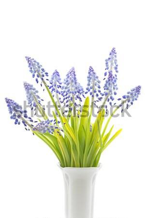 Virágok mintázott textúra háttér mező kék Stock fotó © haraldmuc