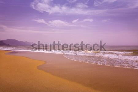 Chalikouna Beach on the island of Corfu, Greece Stock photo © haraldmuc