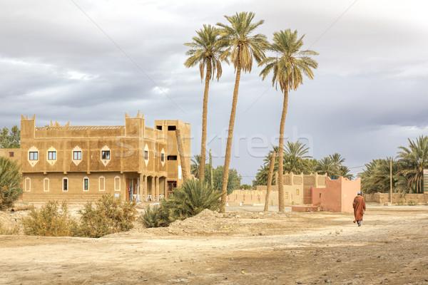 Moroccan architecture and landscape Stock photo © haraldmuc
