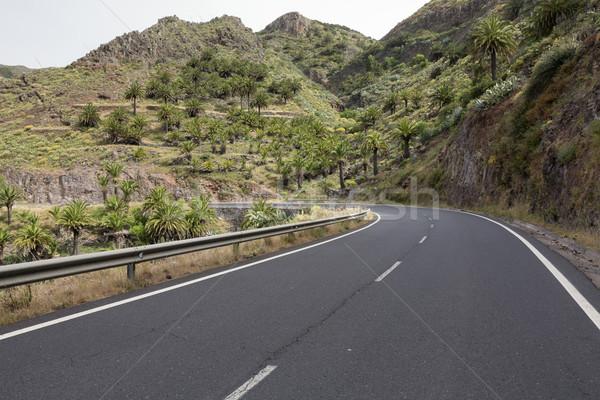 Estrada rural ilha Espanha estrada montanha verão Foto stock © haraldmuc
