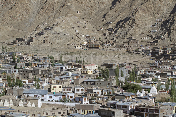 Overlooking Leh, capital of Ladakh, India Stock photo © haraldmuc