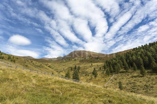 Hiking in the North Italian mountains Stock photo © haraldmuc