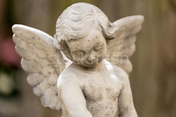ангела статуя выстрел мелкий лице Сток-фото © haraldmuc