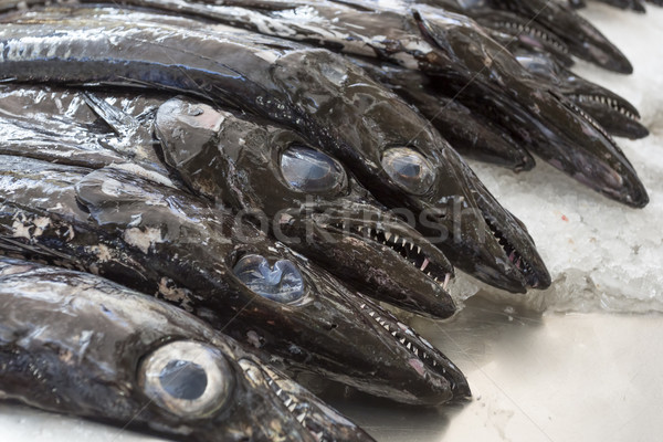 Black scabbard fish on a market Stock photo © haraldmuc