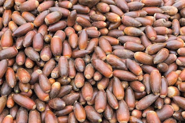 Nueces venta mercado Marruecos mujeres trabajo Foto stock © haraldmuc