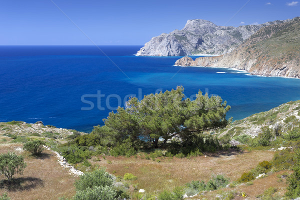 Scenic coastline on Karpathos island, Greece Stock photo © haraldmuc