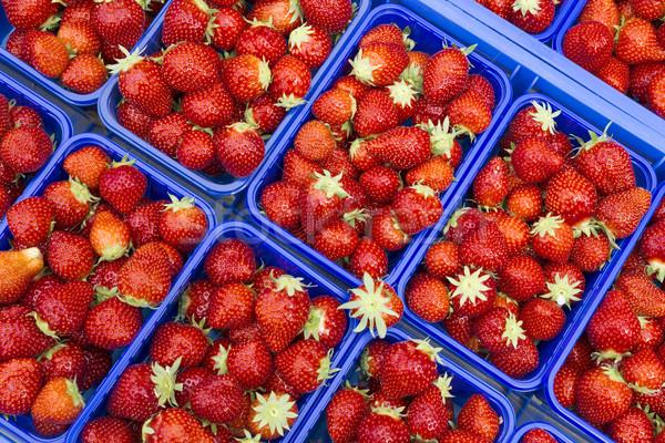 Rijp aardbeien markt voorjaar voedsel Rood Stockfoto © haraldmuc