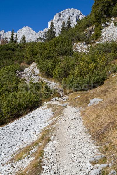 Stok fotoğraf: Yürüyüş · alpler · dağlar · taş · sonbahar · tatil