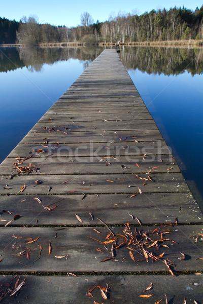 Fürdik tó Németország fából készült égbolt víz Stock fotó © haraldmuc