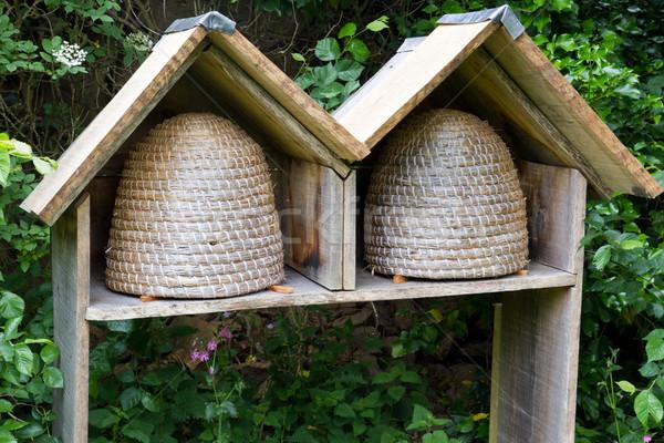 Deux vide abeille fleurs ferme miel Photo stock © haraldmuc